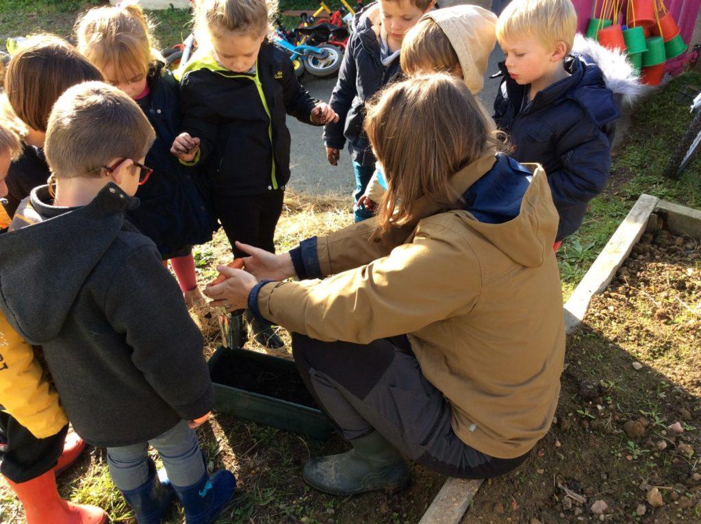 Un jardin bio dans notre école, deuxième séance…