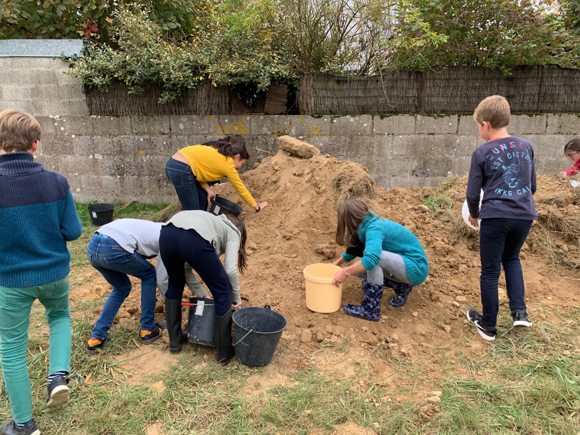 Read more about the article Un jardin bio dans notre école – deuxième séance