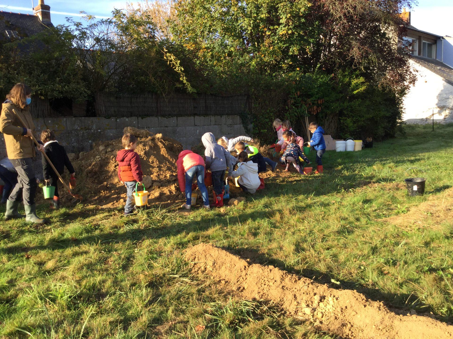 Read more about the article Deuxième épisode au jardin