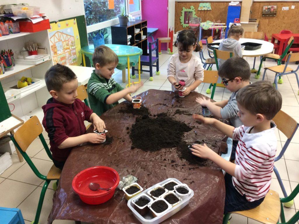 Février : commençons les semis pour notre jardin