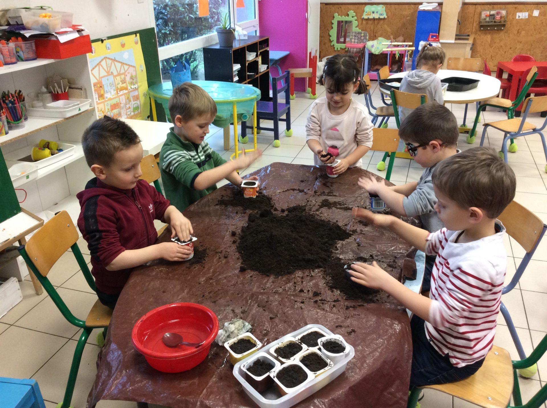 Read more about the article Février : commençons les semis pour notre jardin